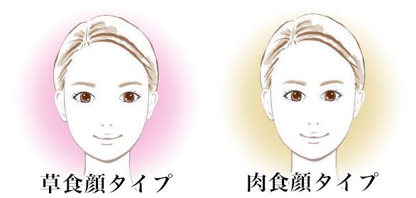 草食顔タイプ肉食顔タイプ